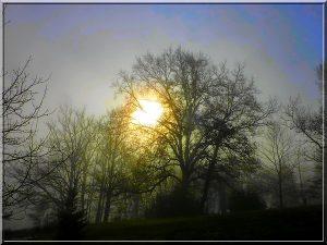Entre soleil et brouillard